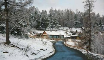 Cold, February, Frost, January, Road, Snow, Tree, Winter, atmosphere, branch, chill, chilly, climate, coniferous, country, countryside, covered, december, environment, fluffy, flurry, forest, freeze, frosty, frozen, house, landscape, natural, nature, outdoors, overcast, panorama, panoramic, picturesque, precipitation, residential, rural, scene, scenery, scenic, season, seasonal, sky, snowdrift, snowy, travel, view, village, weather, white, wooden